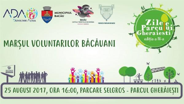 marsul voluntarilor
