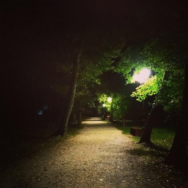9 parcul mogosoaia noaptea