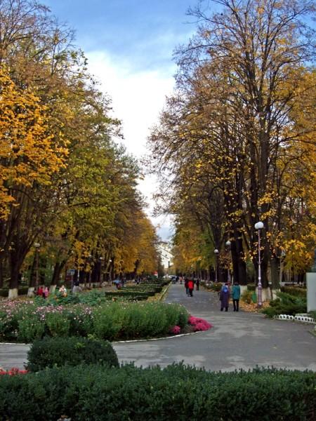 Toamna in Parcul Cancicov