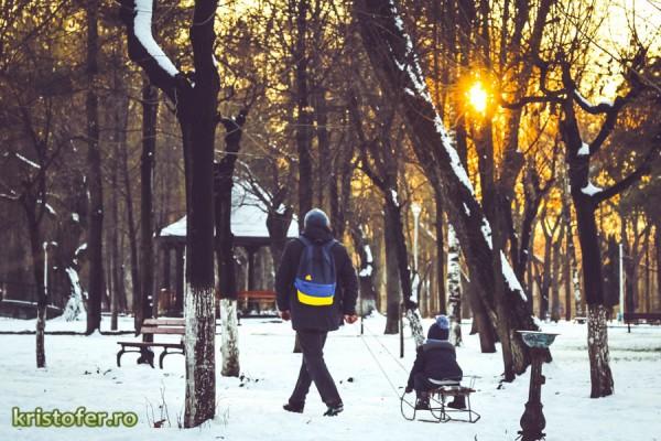 parcul cancicov iarna