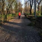 stare Parcul Cancicov 2018-12