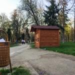 stare Parcul Cancicov 2018-14