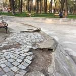 stare Parcul Cancicov 2018-6