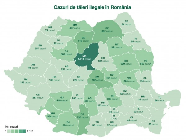 Raportul tăierilor ilegale din pădurile României în 2017