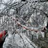 01 polei freezing rain bucuresti