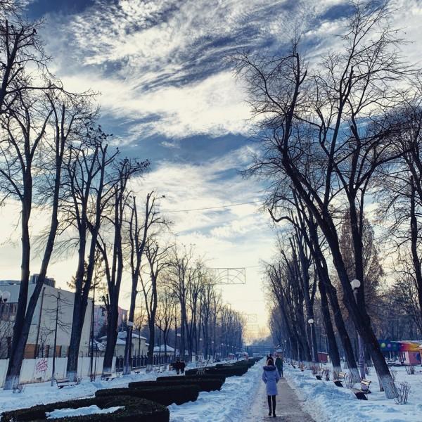 04 iarna parcul cancicov