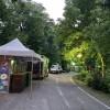 parcul cancicov festival street