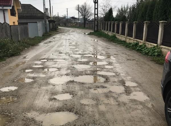 strada arinilor bacau