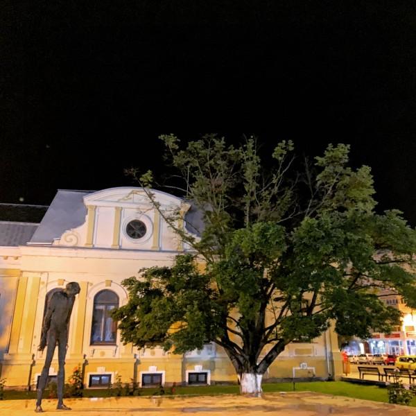 gand nocturn bibilioteca bacovia bacau