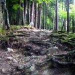 Traseul celor 300 de scari (3)