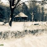 Parcul Cancicov (6)