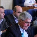sedinta consiliul judetean bacau aprilie 2012 (7)