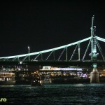 Budapest Danube cruise by night-17