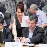 constituirea consiliului local bacau 2012 (7)