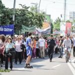 festivalul arlekin 2012  (2)