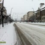 iarna bacau 2012 (1)
