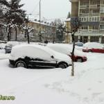 iarna bacau 2012 (4)
