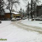 iarna bacau 2012 (7)