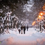 parcul cancicov iarna craciun 2012 10