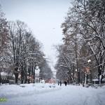 parcul cancicov iarna craciun 2012 2