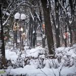 parcul cancicov iarna craciun 2012 7