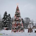 parcul cancicov iarna craciun 2012 8