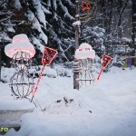 parcul cancicov iarna craciun 2012 9