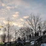 Parcul Alexandru Ioan Cuza Bucuresti 2013 (6)