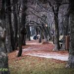 Parcul Alexandru Ioan Cuza Bucuresti 2013 (9)