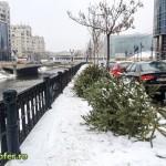 brazi in strada - bucuresti 2013 (1)