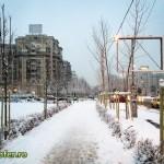 iarna bucuresti 2013 (1)