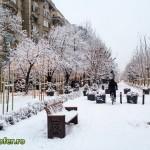 iarna bucuresti 2013 (4)
