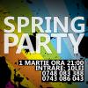 spring party alecsandri 2013 dublin 1 martie