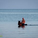 cu calul in mare la sulina-1