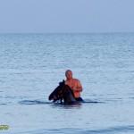 cu calul in mare la sulina-3
