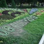 slanic moldova flori-2
