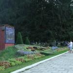 slanic moldova flori-3