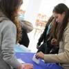 alegeri in licee consiliul elevilor bacau 2013 (4)