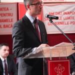 comitetul executiv PSD Bacau octombrie 2013-9