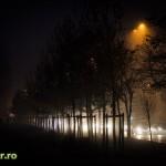 bucuresti ceata decembrie 2013 iarna (4)