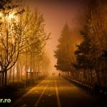 bucuresti ceata decembrie 2013 iarna (6)