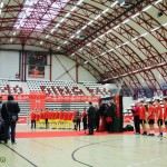 Cupa Mondiala Fifa 2014 la Bucuresti (3)