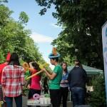 Targul Voluntarilor Bacau 2014 (22)