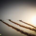 show aviatic bias 2014 (25)