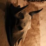 muzeu piatra neamt-23