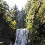 parcul national ceahlau prineamt-11
