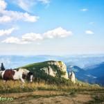parcul national ceahlau prineamt-27