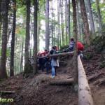 parcul national ceahlau prineamt-5