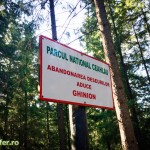 parcul national ceahlau prineamt-56