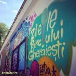 zilele parcului gheraiesti bacau 2014 (18)